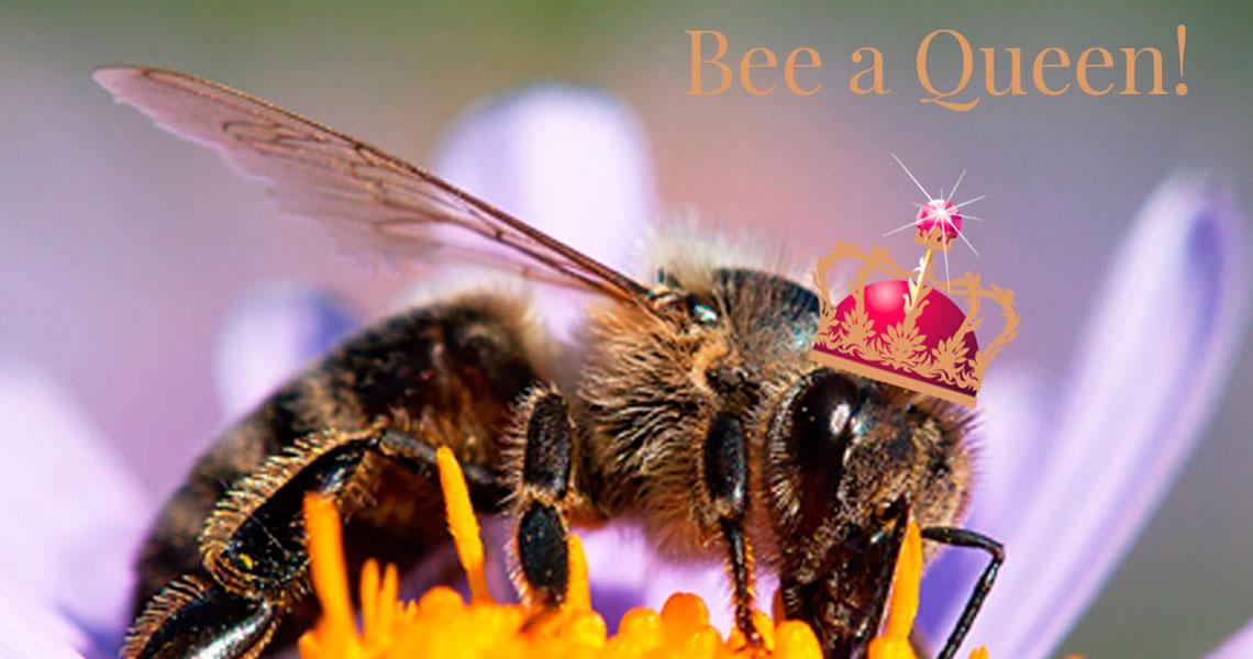 Bee a queen
