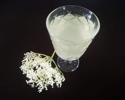 Holunder Blüte Sirup