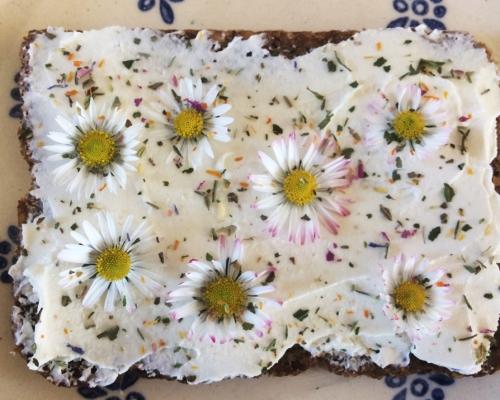 Gänseblümchen- Brot